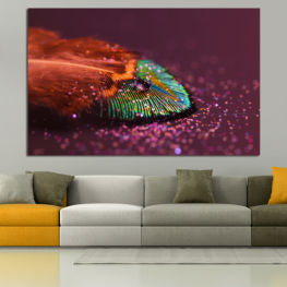 Abstraction, Drops, Light, Feather, Design, Fantasy, Glitter, Abstracts » Red, Brown, Black, Dark grey
