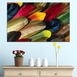 Abstraction, Colorful, Feather » Red, Brown, Black, Dark grey