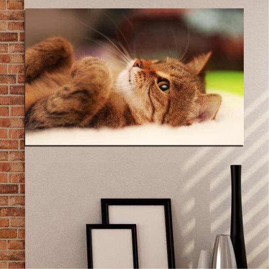 Canvas prints & wall decorative panels - 1 piece №0377 » Brown, White, Beige, Dark grey » Animal, Portrait, Cat Form #1