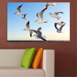 Sky, Birds, Seagull » Turquoise, Gray, White