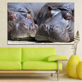 Животни, Портрет, Хипопотам » Черен, Сив, Тъмно сив