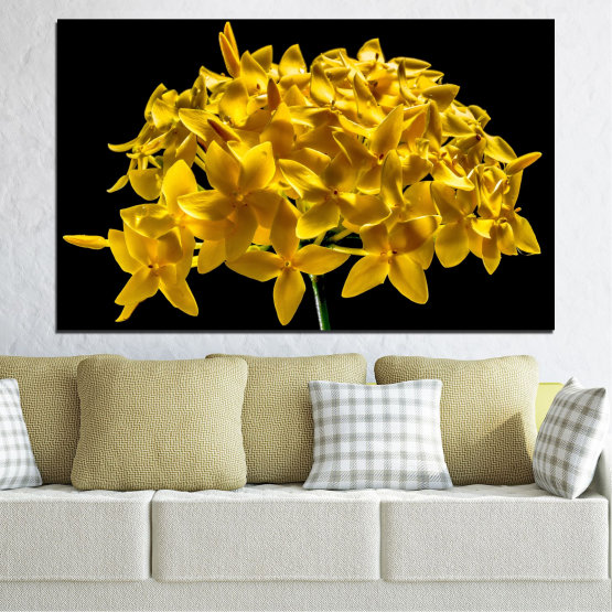 Canvas prints & wall decorative panels - 1 piece №0479 » Green, Yellow, Orange, Black » Flowers, Collage, Shine Form #1