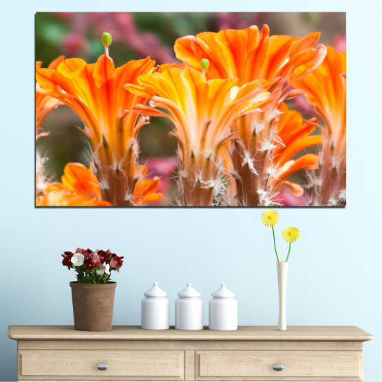 Canvas prints & wall decorative panels - 1 piece №0487 » Orange, Brown, Gray » Flowers, Nature, Cactus Form #1