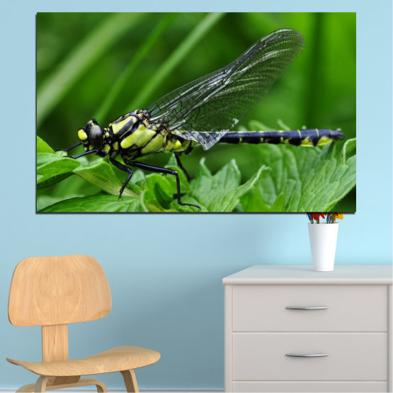 Canvas prints & wall decorative panels - 1 piece №0499 » Green, Black, Gray » Nature, Animal, Water horse Form #1