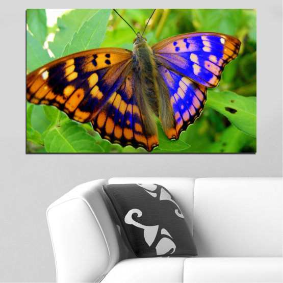 Canvas prints & wall decorative panels - 1 piece №0502 » Green, Black, Gray » Nature, Animal, Butterfly Form #1
