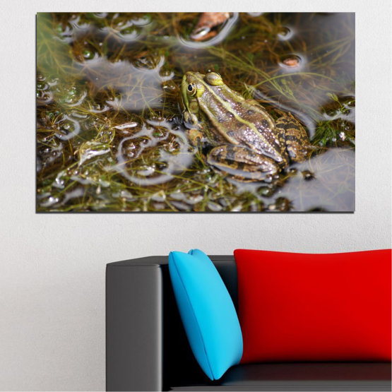 Canvas prints & wall decorative panels - 1 piece №0510 » Green, Brown, Gray, Dark grey » Water, Frog, Reptile Form #1