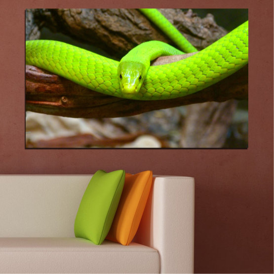 Canvas prints & wall decorative panels - 1 piece №0513 » Green, Brown, Black, Dark grey » Tree, Snake, Reptile Form #1