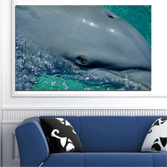 Canvas prints & wall decorative panels - 1 piece №0532 » Purple, Blue, Black, Gray, Dark grey » Animal, Water, Dolphin, Fish Form #1