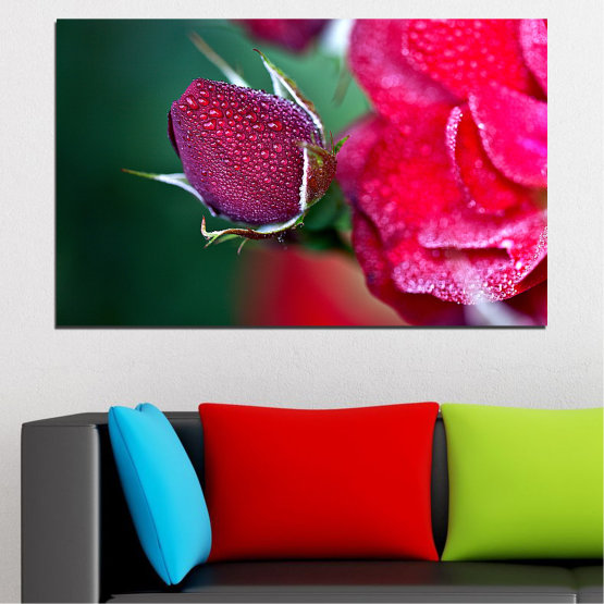 Canvas prints & wall decorative panels - 1 piece №0539 » Red, Pink, Black, Dark grey » Flowers, Rose, Drops Form #1