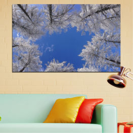 Tree, Forest, Sky, Winter » Blue, Gray, Dark grey
