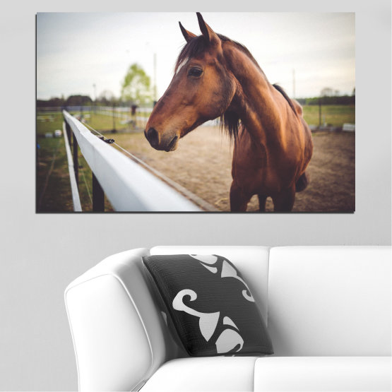 Canvas prints & wall decorative panels - 1 piece №0556 » Brown, Gray, White, Dark grey » Animal, Horse, Portrait Form #1