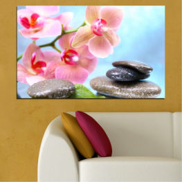 Water, Flowers, Feng shui, Orchid, Stones, Zen, Spa » Gray, White, Milky pink