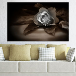 Flowers, Retro, Rose » Brown, Black, Gray, Dark grey