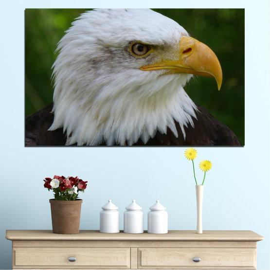 Декоративни панели и картини от канава - от 1 част №0613 » Зелен, Черен, Сив, Тъмно сив » Птици, Портрет, Орел Form #1