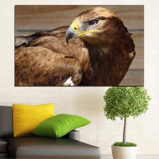 Canvas prints & wall decorative panels - 1 piece №0615 » Brown, Black, Gray, Dark grey » Birds, Portrait, Eagle Form #1