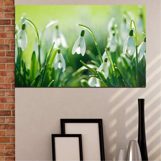 Canvas prints & wall decorative panels - 1 piece №0669 » Green, Gray, Beige » Nature, Flowers, Spring, Galanthus Form #1