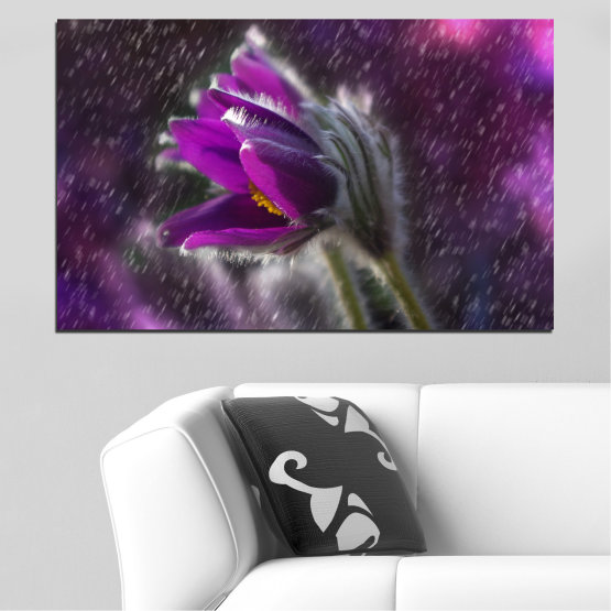 Canvas prints & wall decorative panels - 1 piece №0694 » Purple, Black, Gray, Dark grey » Flowers, Rain, Spring, Pasque flower Form #1