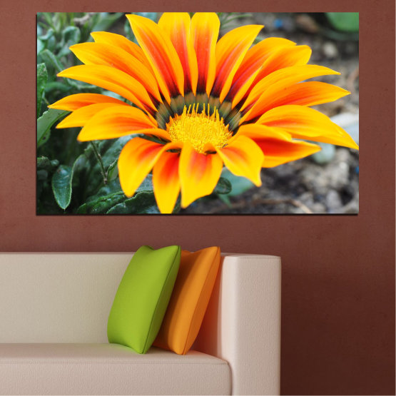 Canvas prints & wall decorative panels - 1 piece №0695 » Yellow, Orange, Black, Gray, Dark grey » Spring, Color accent, Gerbera Form #1