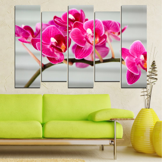 Canvas prints & wall decorative panels - 5 pieces №0702 » Red, Pink, Gray, Milky pink » Flowers, Orchid, Bouquet, Decoration, Flower, Purple Form #3
