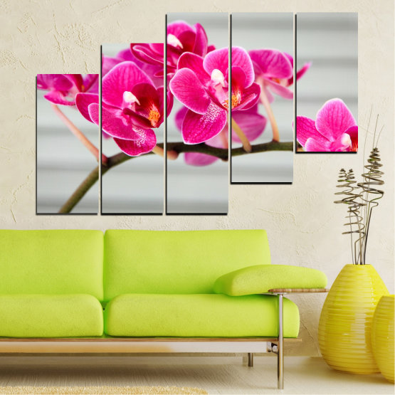 Canvas prints & wall decorative panels - 5 pieces №0702 » Red, Pink, Gray, Milky pink » Flowers, Orchid, Bouquet, Decoration, Flower, Purple Form #8