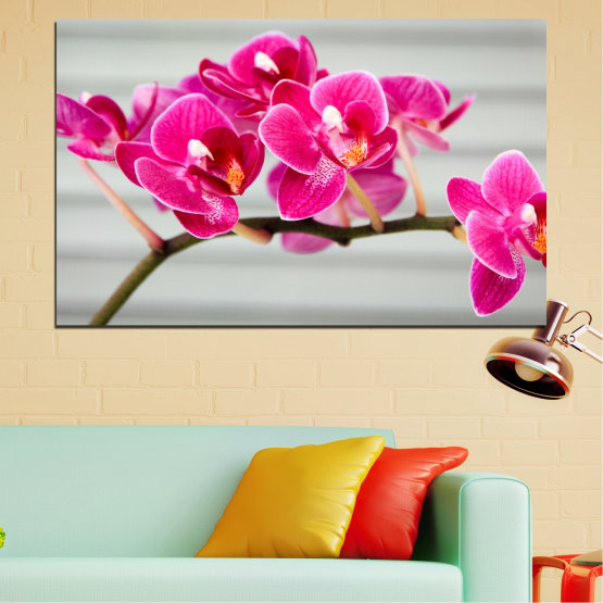 Canvas prints & wall decorative panels - 1 piece №0702 » Red, Pink, Gray, Milky pink » Orchid, Flowers, Flower, Decoration, Bouquet, Purple Form #1