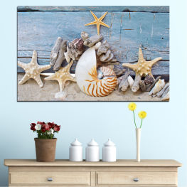 Sea, Summer, Beach, Shell » Turquoise, Gray, Beige, Dark grey
