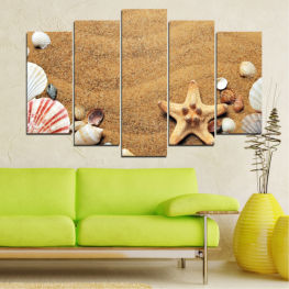 Sea, Beach, Summer, Star, Sand, Stone, Tropical, Starfish, Shell » Green, Orange, Brown, Gray, Beige