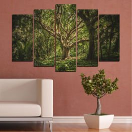 Tree, Forest, Life » Green, Brown, Black, Dark grey