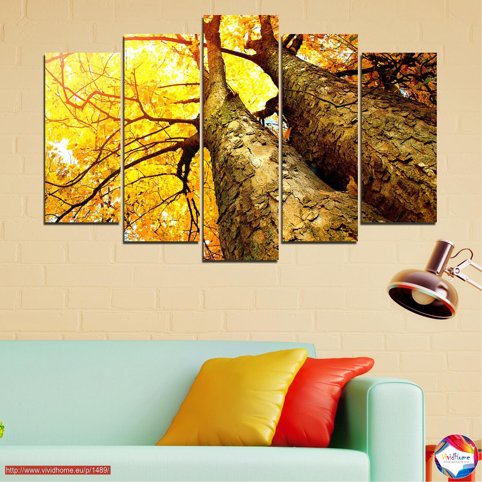 Forest, Tree, Autumn, Leaf, Trees, Leaves, Park №0762