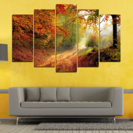 Forest, Tree, Autumn, Colorful, Road, Leaves, Park » Red, Orange, Brown, Black