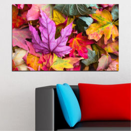 Tree, Autumn, Colorful, Leaf, Leaves » Red, Pink, Purple, Yellow, Brown, Milky pink, Dark grey