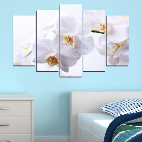 Декоративни панели и картини от канава - от 5 части №0771 » Сив, Бял, Бежов » Орхидея, Цвете, Деликатен, Бял Form #1