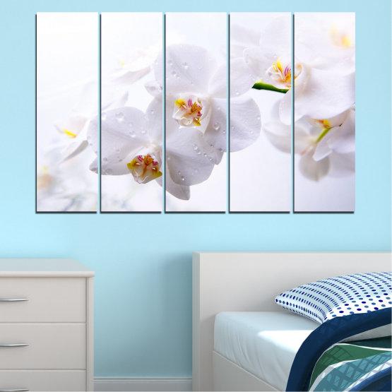 Декоративни панели и картини от канава - от 5 части №0771 » Сив, Бял, Бежов » Орхидея, Цвете, Деликатен, Бял Form #2
