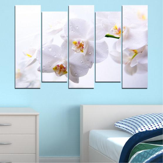 Декоративни панели и картини от канава - от 5 части №0771 » Сив, Бял, Бежов » Орхидея, Цвете, Деликатен, Бял Form #3