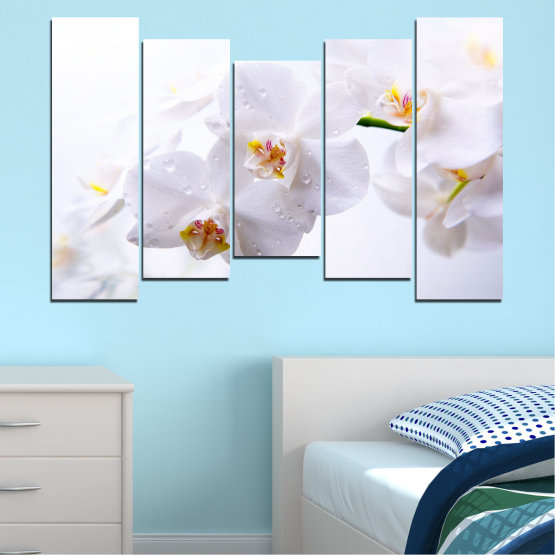 Декоративни панели и картини от канава - от 5 части №0771 » Сив, Бял, Бежов » Орхидея, Цвете, Деликатен, Бял Form #4