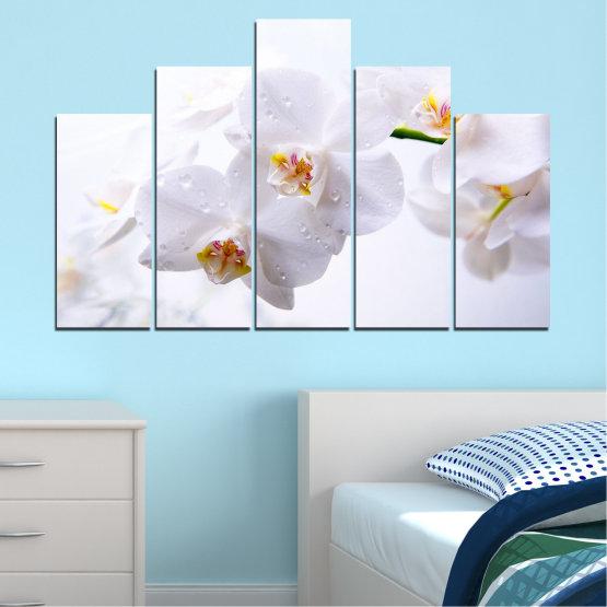 Декоративни панели и картини от канава - от 5 части №0771 » Сив, Бял, Бежов » Орхидея, Цвете, Деликатен, Бял Form #5