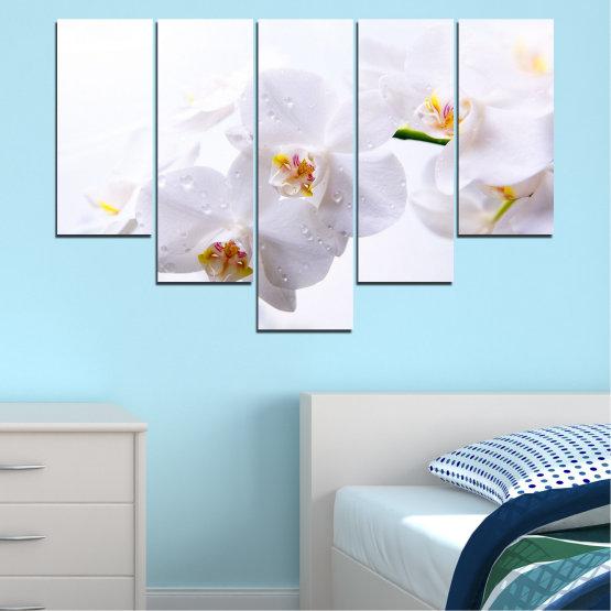 Декоративни панели и картини от канава - от 5 части №0771 » Сив, Бял, Бежов » Орхидея, Цвете, Деликатен, Бял Form #6