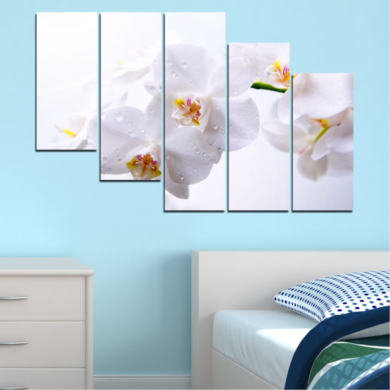 Декоративни панели и картини от канава - от 5 части №0771 » Сив, Бял, Бежов » Орхидея, Цвете, Деликатен, Бял Form #7