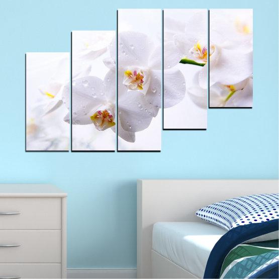Декоративни панели и картини от канава - от 5 части №0771 » Сив, Бял, Бежов » Орхидея, Цвете, Деликатен, Бял Form #8