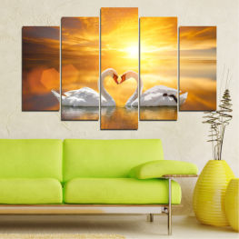 Water, Sea, Sunset, Ocean, Reflection, Swan, Light, Love » Yellow, Orange, Brown, Beige, Dark grey