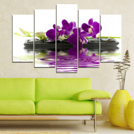 Water, Orchid, Decoration, Bamboo, Flower, Spa, Delicate » Purple, Gray, White, Dark grey