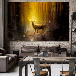Animal, Forest, Wildlife, Trees, Wild, Wilderness, Brown, Reindeer, Horns » Green, Brown, Black, Dark grey
