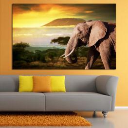 Wildlife, Elephant, Safari » Yellow, Brown, Beige