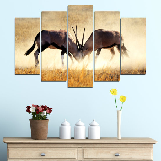 Canvas prints & wall decorative panels - 5 pieces №0012 » Orange, Brown, Gray, White, Beige » Animal, Africa, Antelope Form #1