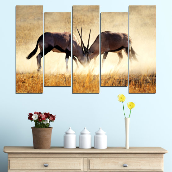 Canvas prints & wall decorative panels - 5 pieces №0012 » Orange, Brown, Gray, White, Beige » Animal, Africa, Antelope Form #3