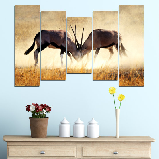 Canvas prints & wall decorative panels - 5 pieces №0012 » Orange, Brown, Gray, White, Beige » Animal, Africa, Antelope Form #4