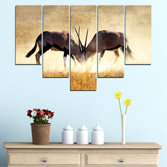 Canvas prints & wall decorative panels - 5 pieces №0012 » Orange, Brown, Gray, White, Beige » Animal, Africa, Antelope Form #6