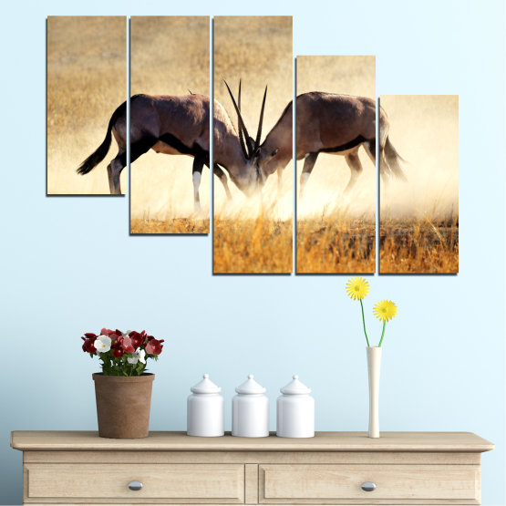 Canvas prints & wall decorative panels - 5 pieces №0012 » Orange, Brown, Gray, White, Beige » Animal, Africa, Antelope Form #7