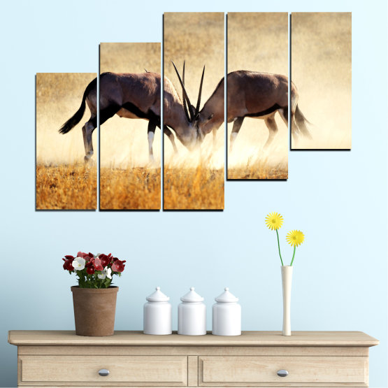 Canvas prints & wall decorative panels - 5 pieces №0012 » Orange, Brown, Gray, White, Beige » Animal, Africa, Antelope Form #8