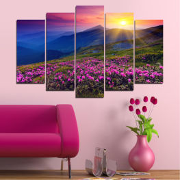 Nature, Flowers, Sunrise, Sun, Mountain, Field » Pink, Purple, Blue, Yellow, Black, Dark grey